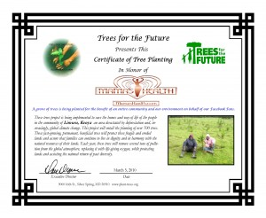 mama's health.com 3.5 trees for the future